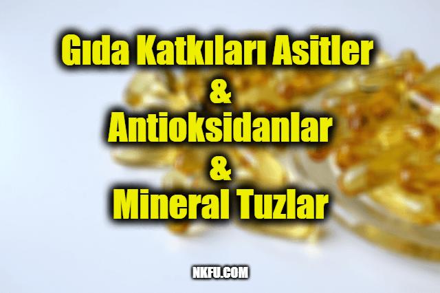 Gıda Katkıları Asitler – Antioksidanlar – Mineral Tuzlar