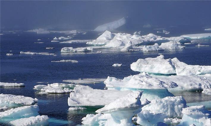 Kuzey Buz Denizi
