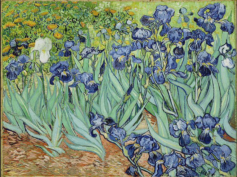 Vincent-van-Gogh-irisler