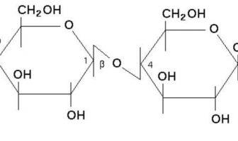 Laktoz Formülü