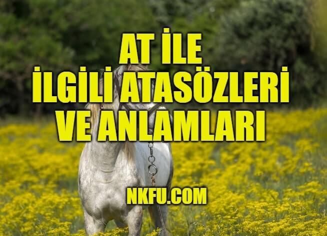 At İle İlgili Atasözleri ve Anlamları