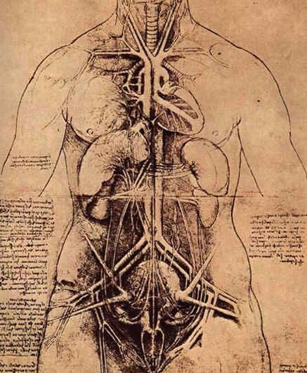 Leonardo Da Vinci Çizimleri