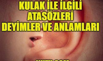 Kulak İle İlgili Atasözleri ve Deyimler - Anlamları