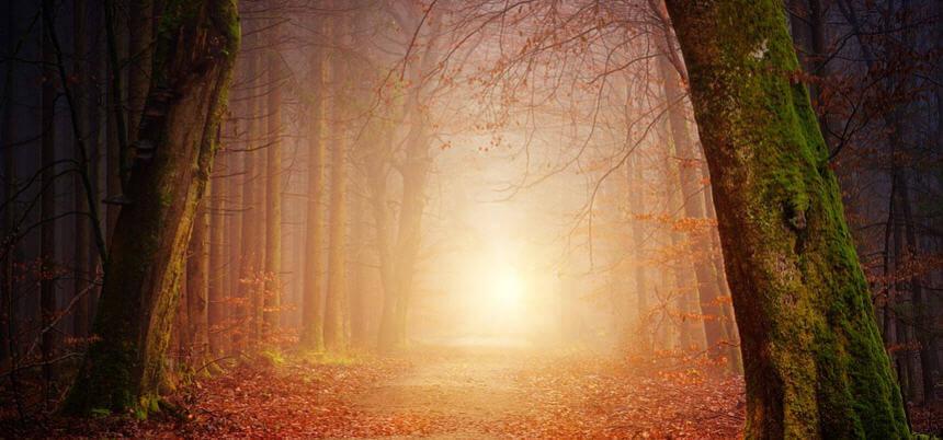 Işık Kelimesi ile İlgili Cümleler