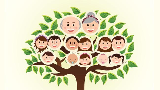 aile soy ağacı