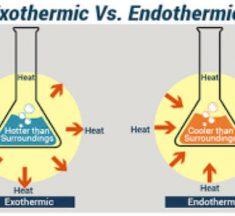 Endotermik ve Ekzotermik Tepkimelerin Özellikleri