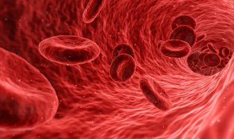 Kan Hücreleri