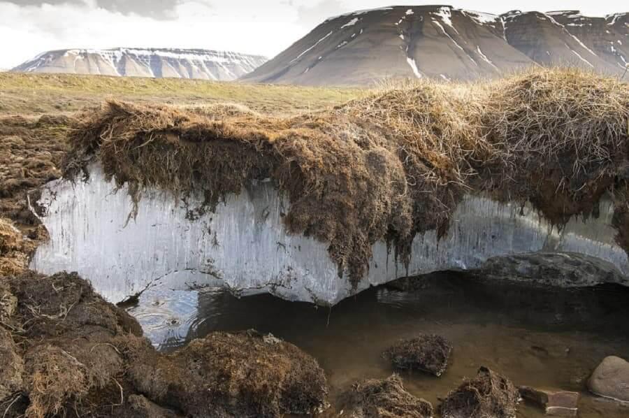permafrost - donmuş toprak