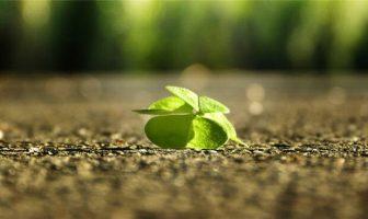 Sağlığı olanın umudu umudu olanın herşeyi vardır atasözünün anlamı