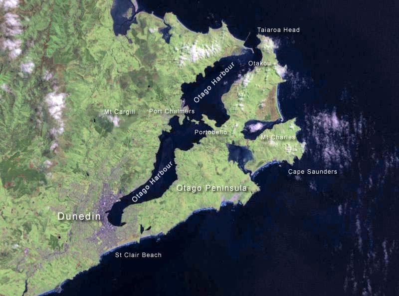 Dunedin haritası