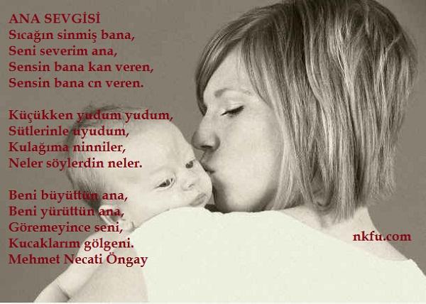 Anne Babalara ve Öğretmenlere Çağrı