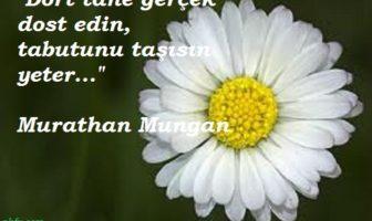 Murathan Mungan Resimli Sözleri