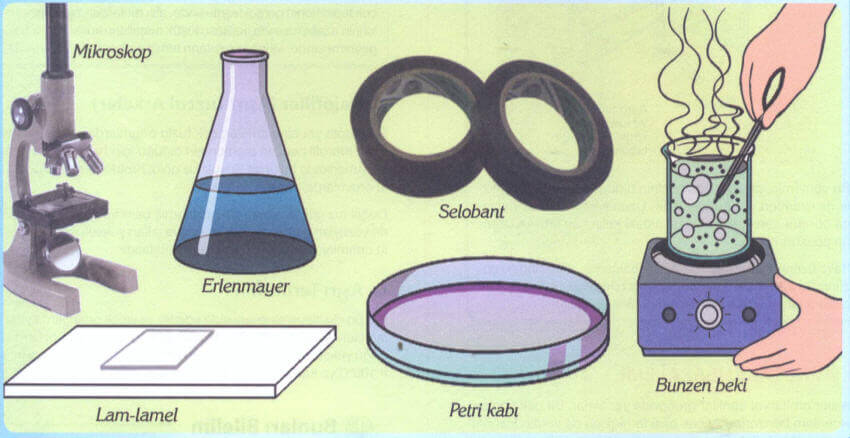 bakteri kültürünün hazırlanması deneyi