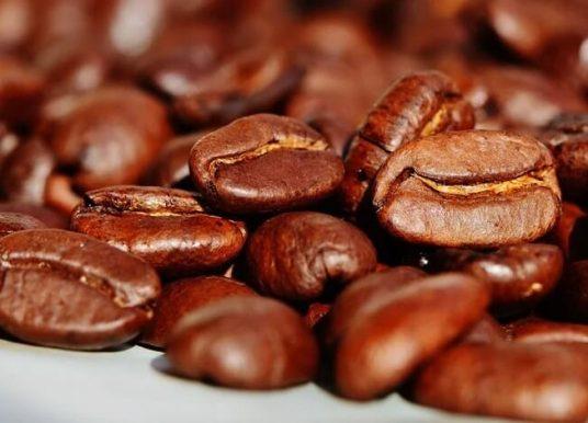 Kahvenin Özellikleri, Kahve Çeşitleri, Sağlık İçin Önemi Hakkında Bilgi
