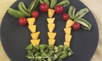 Palmiye Şeklinde Meyveler