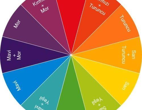 Newton'un Renk Çarkı – Renk Çarkı Deneyi ve Sonuçları