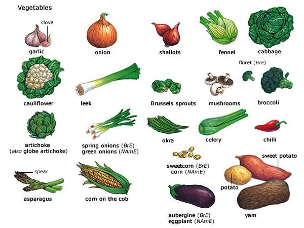 Resimli ingilizce sebzeler