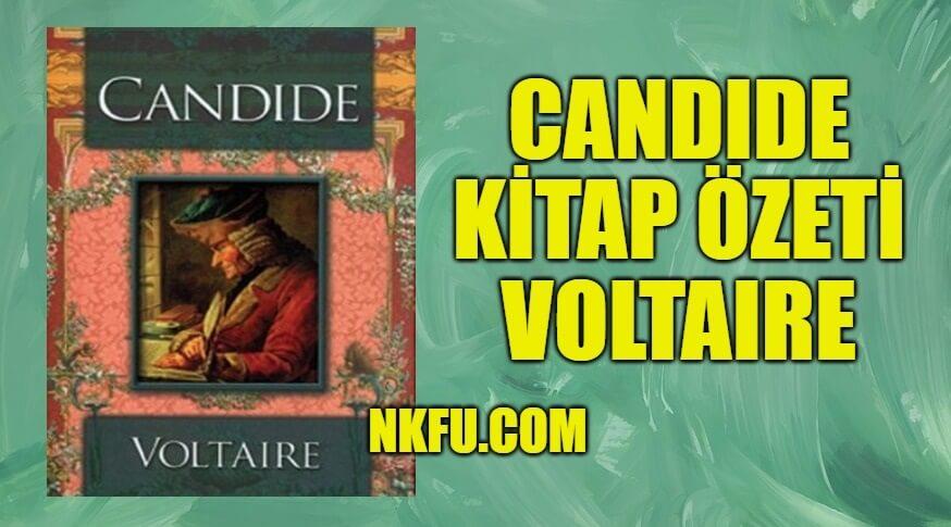 Candide Kitap Özeti - Voltaire