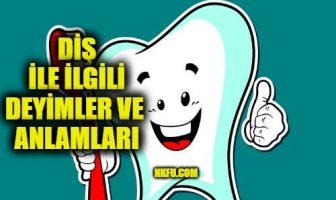Diş İle İlgili Deyimler ve Anlamları