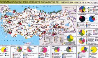 Türkiye Tarım Haritası
