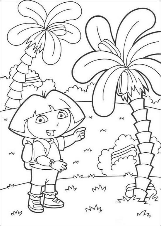 Dora Boyama Sayfaları