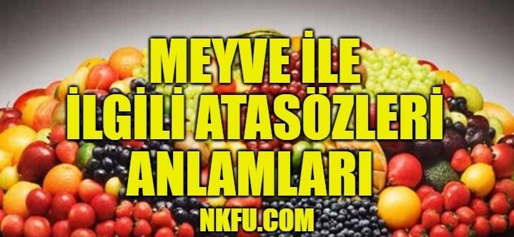 Meyve İle İlgili Atasözleri