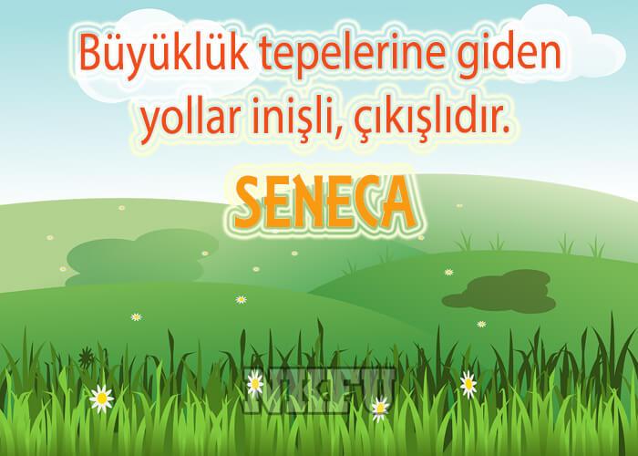 Seneca Resimli Sözleri