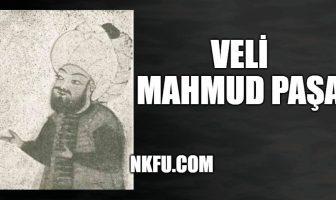 Veli Mahmud Paşa