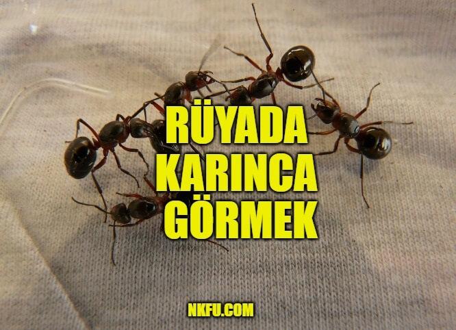 rüyada karınca