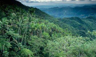 Paraguay Doğa