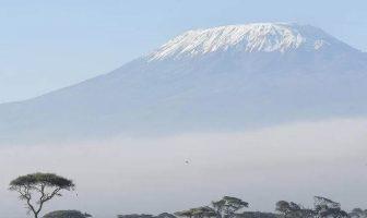 Yüksek Dağ