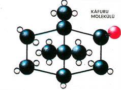 Kafuru Molekülü