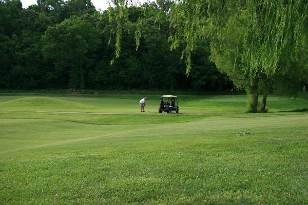Golf Oyun Alanından Bir Görüntü