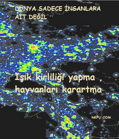 Işık kirliliği sloganları