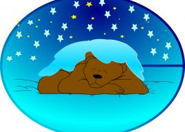 Kış Uykusu Nedir? Kış Uykusuna Yatan Hayvanlar Nelerdir?
