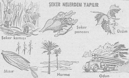 seker-uretimi