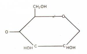 Glükozidik Motif
