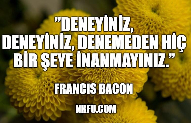 Francis Bacon Sözleri