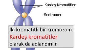 Kromatit