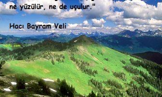 Hacı Bayram Veli Sözleri