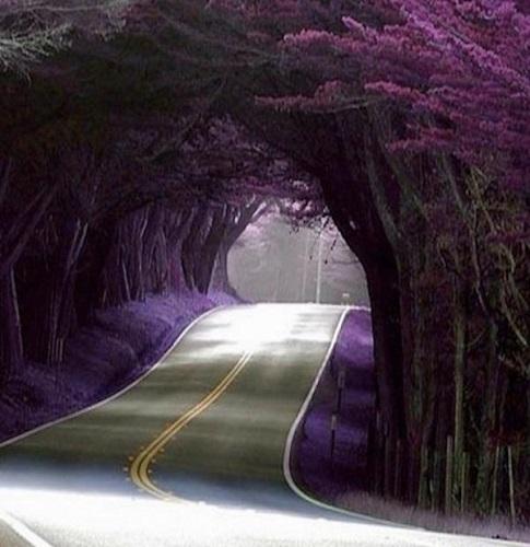 Doğal Tüneller