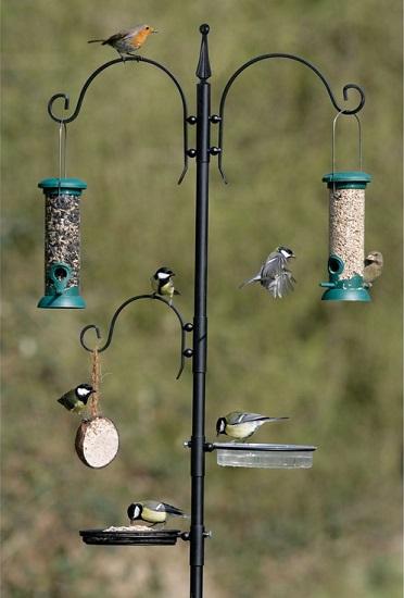Kuş Besleme İstasyonları