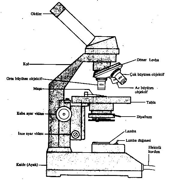Mikroskop ve Bölümleri
