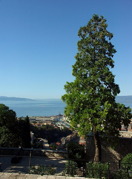 Rijeka - Hırvatistan