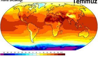 Dünya Sıcaklık Dağılımı Haritası - Temmuz