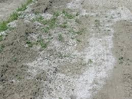 kireçli toprak