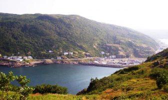 Newfoundland Adası
