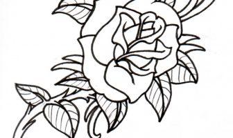 Gül Çiçeği Boyama Sayfaları