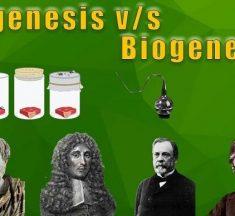 Abiyogenez ve Biyogenez Arasındaki Farklar – Benzerlikler Karşılaştırması