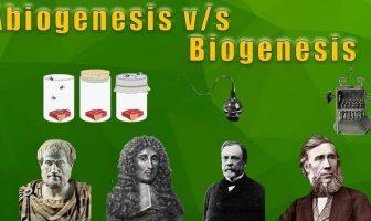 abiyogenez biyogenez